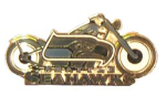 Seahawks Motorcycle Pin