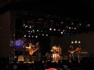 Skynnyn Lynnyrd Band