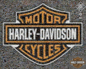 2010 Motorcycle Catalog Cover - Mosaic