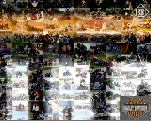 H-D 2010 Catalog Mosaic - CloseUp
