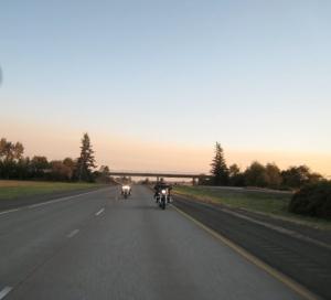 I-5_Sunset