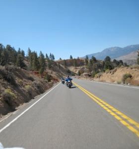 US342