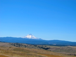 Mt. Hood from Hwy 197 looking West