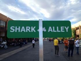 Shark Week III - Utah