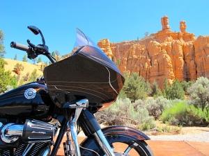 'Glidin' Bryce Canyon
